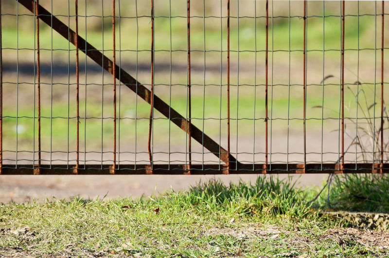 Close-up of field by fence