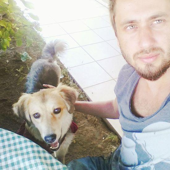 Ilovemydog Cute Pets Dog Mydog Cute Mydogsarecoolerthanyourkids Pets