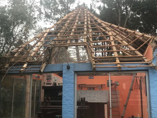 Changing the roof Built Structure Architecture Building Exterior Tree Day No People Plant Building Nature Low Angle View Outdoors Roof House Wood - Material Text Metal Sky Number Communication Travel
