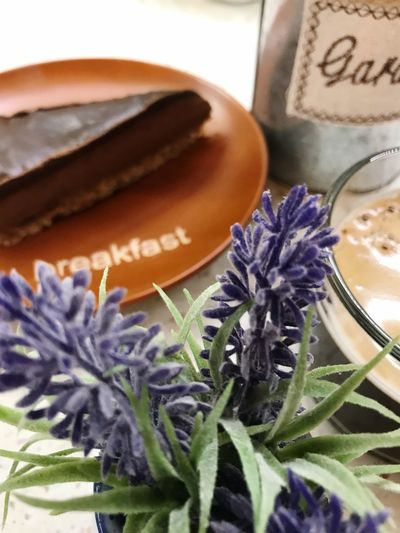 Coffee Breakfast ♥ Flower Plant Flowering Plant Purple Close-up No People Freshness Nature Growth Lavender Flower Head