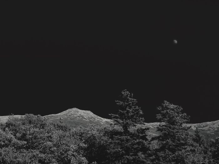 Moonrise over White Mountains Simplicity Minimalism Hills Landscape Monochrome Mountains Stability Moon Night Copy Space Nature No People Plant Growth Tree
