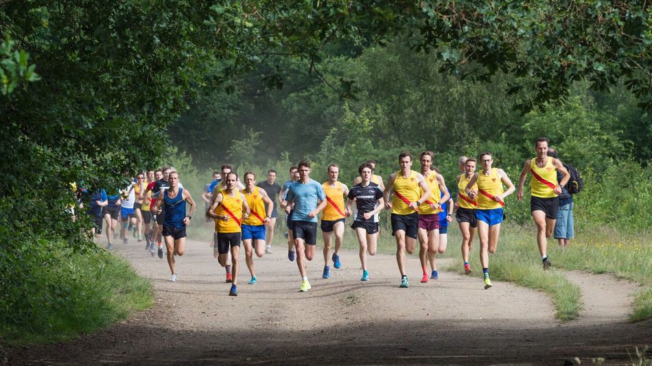 The Thundering Herd Adult Athlete Competition Crowd Day Exercising Full Length Group Of People Healthy Lifestyle Large Group Of People Men Nature Outdoors Parkrun Plant Real People Running Sport Tree Wimbledon Common Young Adult