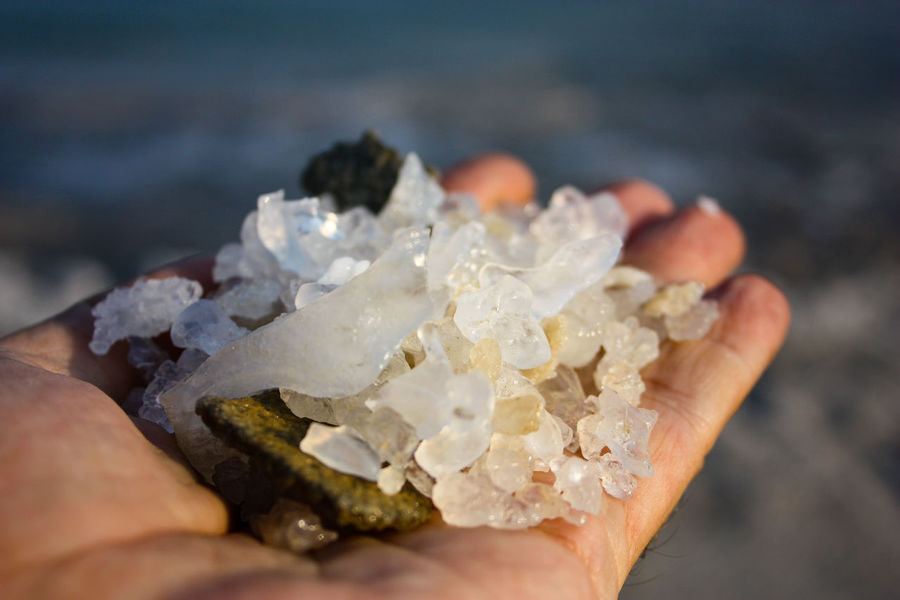 Closeup of the Dead sea crystal salt in Israel Desert Famous Natural Nature Plant Rock Salt Travel View Beach Beauty Close-up Crystal Crystalised Dead Healthy Israel Landscape Mineral Outdoors Scenery Scenics Sea Tourism Water