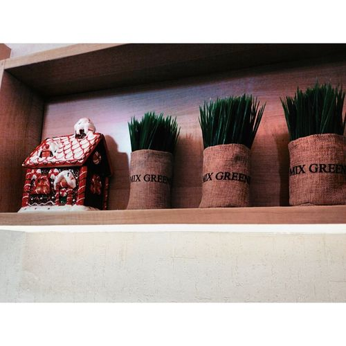 Mix Green Grass Christmas Cottage Cute