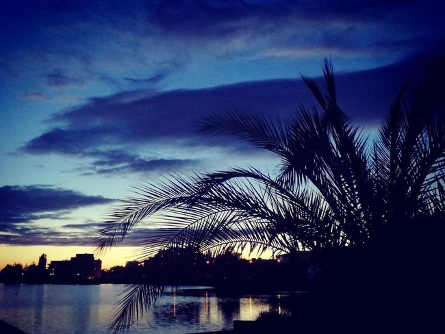Silhouette Tree Water Scenics Cloud - Sky No People Sunset Palm Tree Tranquility Outdoors Beauty In Nature Sky Dramatic Sky Lake View Reflection Vacations City Lights Summer Best EyeEm Shot Blue Tranquility Night Beauty In Nature Lac Summer Time