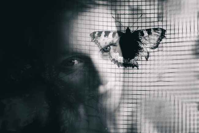 Art Body Part Butterfly Butterfly - Insect Cage Digital Composite Dubleexposure Feline Headshot Human Body Part Indoors  Looking At Camera Mammal One Animal One Person Portrait Real People Window