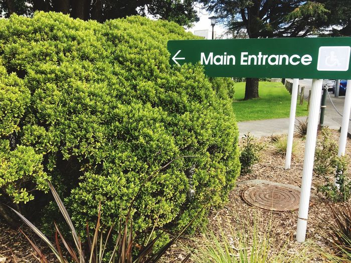 Main Entrance sign to a hospital Text Western Script Communication Guidance Main Entrance Hospital Entrance Hospital Sign Entrance Sign