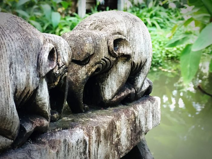No People Day Close-up Outdoors Sculpture Statue Water Animal Themes Nature Elephant Wooden Structure Thailand Thai Bow Traditional Culture