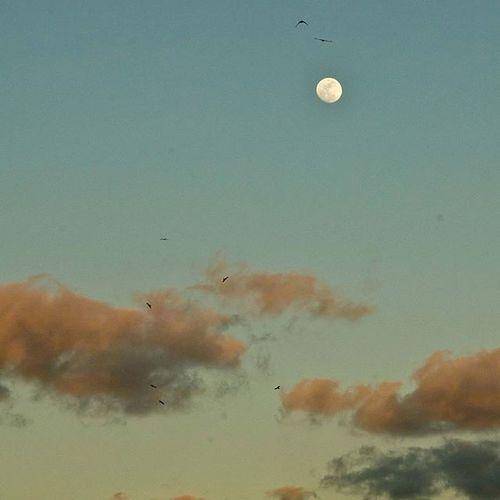 😍😍 Karachi Pakistan Aimanadeel Nofilterneeded Sunset Sunsetsniper Inlove Love Colors Travelgram Photographerslifeforme Photooftheday Clouds Evening Yummy Music GodIsAnArtist