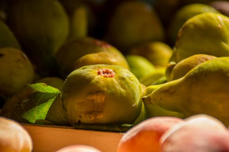 Close-up Cowards Feigen Feigenfrucht Food Food And Drink Freshness Fruit Healthy Eating Italy No People Sorrento
