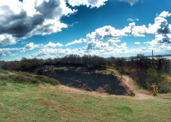 Runcorn Hill Bush Fire Walking Landscape Landscape_photography Landscape_Collection Blue Sky Grass Burnt