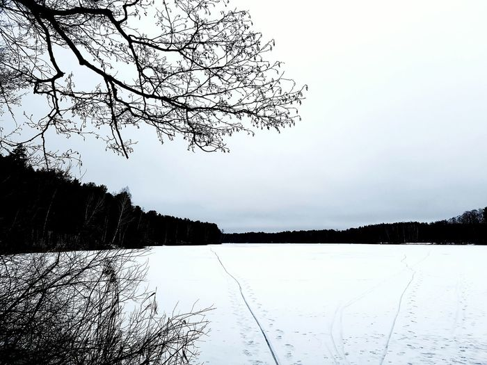 Reflection Water Nature Tree Lake Sky No People Outdoors Scenics Beauty In Nature Day Winter Druskininkai Lithuania 🇱🇹 Tranquility Beauty In Nature Nature Tree Ice