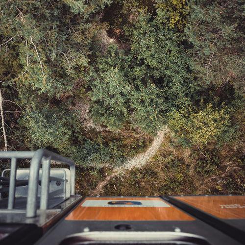 Road amidst trees seen through car windshield
