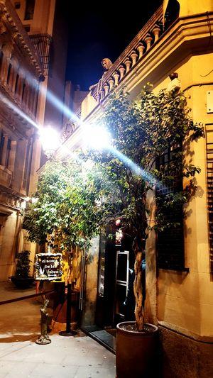Feenbar in Barcelona...abartig schön...echt ein Drink wert... Spanien Barcelona Barcelona, Spain Nachtaufnahme Bar Feenwald Empfehlung