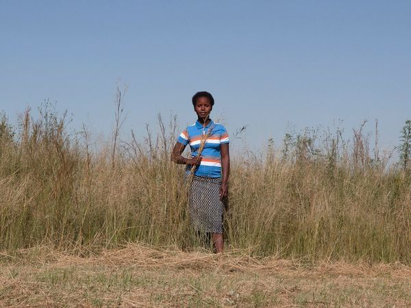 The Veld - Tamile, Johannesburg 2017 Clear Sky Blue Standing Nature Grass One Person Outdoors Portrait Africa African South Africa South Africa Johannesburg Veld March 2017 Holiday Beautiful Country
