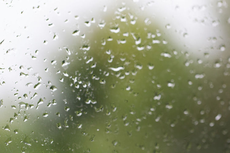 Backgrounds Full Frame Window Close-up Sky Drop Droplet Water Drop High-speed Photography Blade Of Grass Rosé Web Rainy Season Textured  Detail Rain Rainfall Transparent RainDrop Dew Abstract Backgrounds Glass Wet Dripping Monsoon Pink