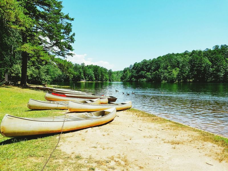 Lake Life Lakes  Canoes Geese Oconee State Park  South Carolina Mountain Rest