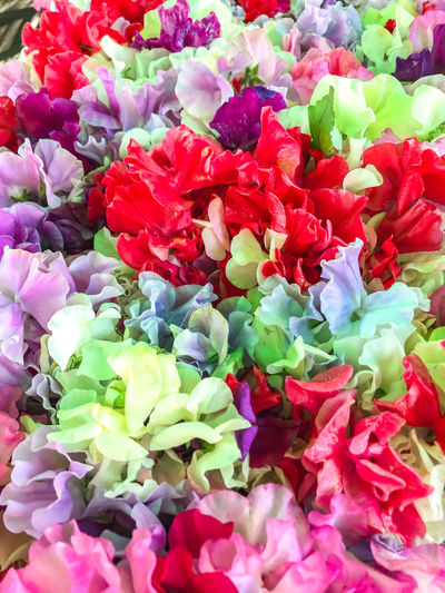 Farmers Market Fresh Produce Nature Backgrounds Beauty In Nature Bouquet Bunch Of Flowers Close-up Day Flower Flower Arrangement Flower Head Flowering Plant Fragility Freshness Full Frame High Angle View Inflorescence Multi Colored Nature No People Organic Petal Plant Sweet Peas