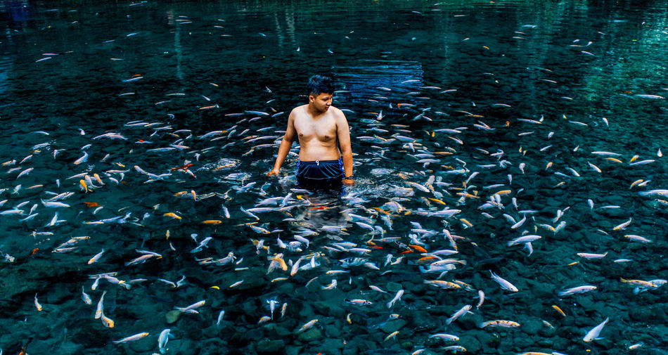 Shirtless young man standing amidst fish in lake