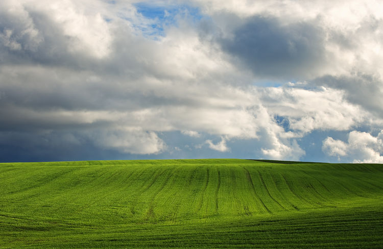 Landscape Agriculture Beauty In Nature Cloud - Sky Crop  Day Environment Field Green Color Growth Idyllic Land Landscape Nature No People Outdoors Plant Rolling Landscape Rural Scene Scenics - Nature Sky Tranquil Scene Tranquility