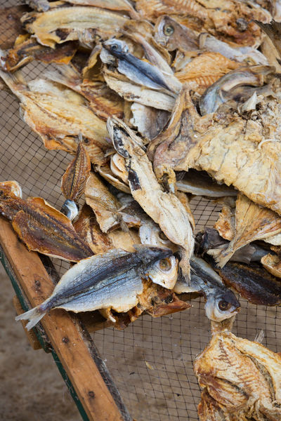 Herring Tradition Animal Animal Themes Close-up Conservation Day Dried Fish  Dried Food Dry Drying Rack Fish Fishing Food Food And Drink Freshness High Angle View No People Old Methods Preserve Seafood Traditional Vertebrate Wellbeing Wood - Material