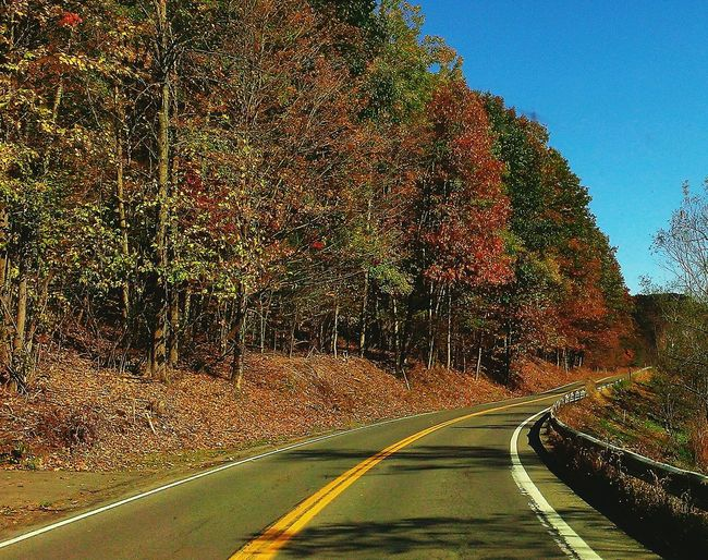 Road The Way Forward Outdoors Nature Fall Beauty Fall Collection Upstate New York Lonelyroad