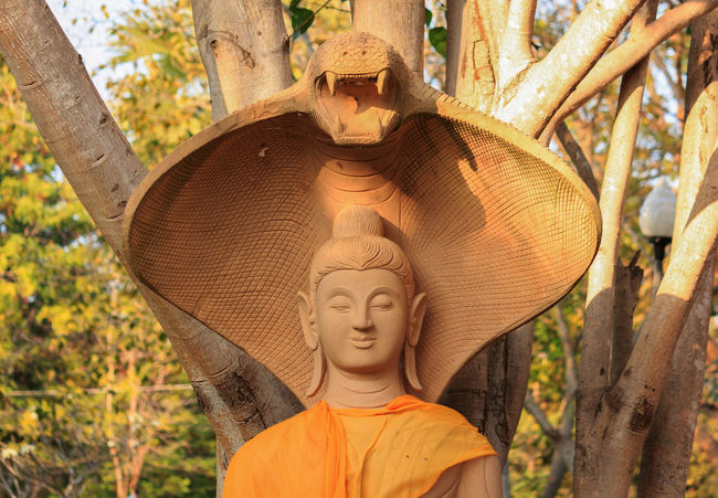 Buddha Budha Budha Statue Budha Temple Budhastatue Budhha Budhha Statue Budhism Budhisme Budhist Budhist Temple Budhistmonk Hand Hands Religion Religion And Beliefs Religion And Tradition Religions Religious  Religious Architecture Religious Art Religious Icons Statue Statues Thailand