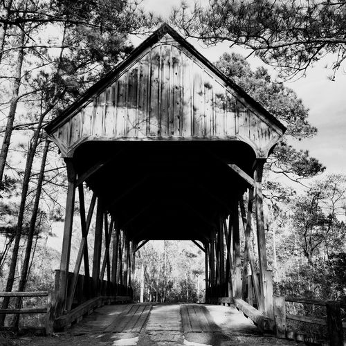Bridge Kitty Hawk Woods Outer Banks, NC OBX Showcase: February EyeEm Best Shots