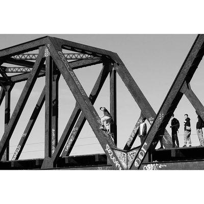 Ottawa 613 City Ontario canada blackandwhite blackandwhitephotography monochrome monochromephotography instablackandwhite instagram instalove igers tweegram capture photogram photography composition life bridge autumn instagood photo snapshot picture