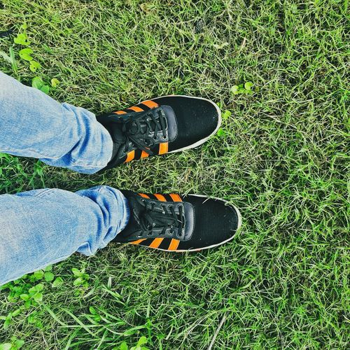 Shoe Human Leg Grass Jeans Standing Human Body Part One Person Real People One Man Only People Outdoors Nature Day Lifestyles Freshness Nature Green Color
