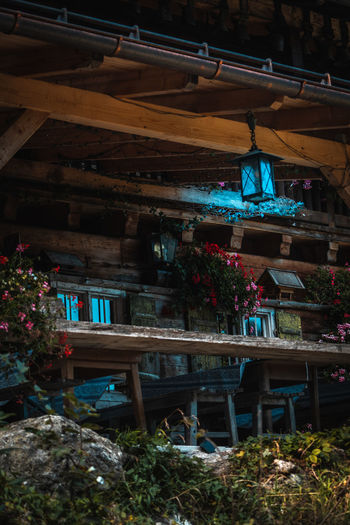 Mountain hut restaurant Plant Built Structure Architecture No People Seat Nature Table Wood - Material Chair Day Flower Flowering Plant Business Potted Plant Indoors  Absence Food And Drink Restaurant Setting Alps Mountain Germany