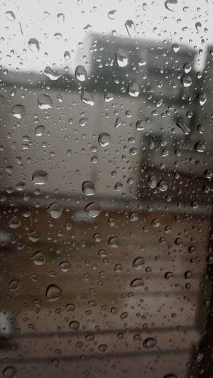 hoy el dia de lluvia es perfecto. Hi! First Eyeem Photo