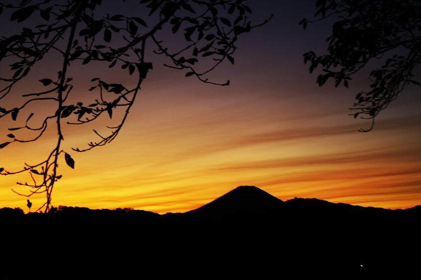 Natural picture frame Silhouette Sunset Moon Landscape Mountain Nature Tree Sky Tranquility Outdoors Night No People Scenics Beauty In Nature Star - Space Astronomy Mt. Fuji EyeEmNewHere Perspectives On Nature