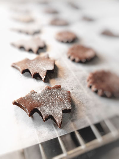 High angle view of christmas cookies Still Life Food Food And Drink Selective Focus Indoors  Shape Christmas Close-up Cookie No People Design Star Shape Holiday Freshness High Angle View Baked Sweet Food Brown Celebration Indulgence Baking Sheet