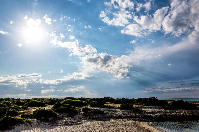 Scenic View Of Bright Sun Over Land