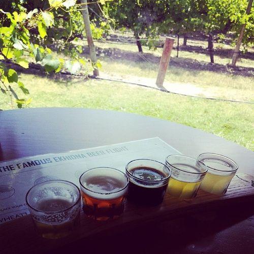 Mmm beer tasting Mclarrenvale Beers LovingLife Winecountry adelaidehillsdrinkingholidays