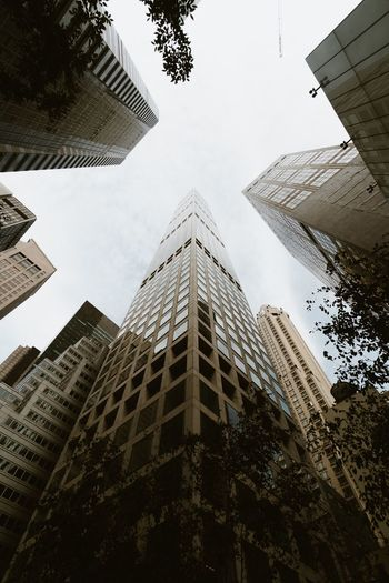 Building Exterior Architecture Built Structure Building Low Angle View City Tall - High Sky Office Building Exterior Tower Tree Nature Day Plant Skyscraper No People Office Modern Outdoors