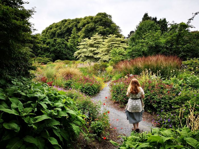 Tree Young Women Water Standing Women Blond Hair Rear View Agriculture Long Hair Sky Hedge Garden Path Stepping Stone Ornamental Garden Lavender Colored Botanical Garden Japanese Garden Maze Lush Foliage Growing Cultivated Land Garden Formal Garden Flowerbed Watering Domestic Garden Patchwork Landscape My Best Photo