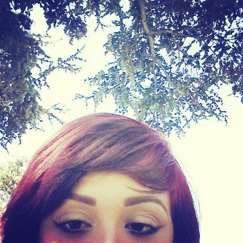 santa Monica chilling in a park before work (: