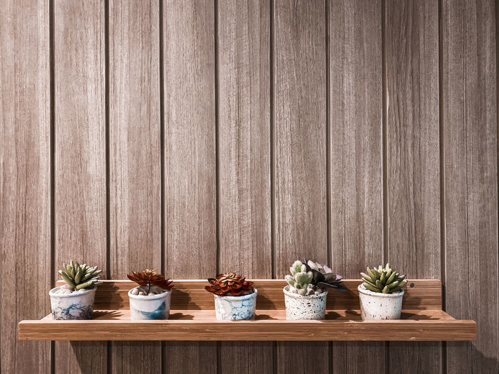 Potted plants on wooden floor against wall