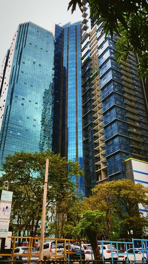 Just nothing (samsung s6 shot) Tree Architecture Tall Built Structure Road Building Exterior Street City Empty Tall - High Tower Skyscraper Office Building Outdoors Sky Day Modern Long Development City Life