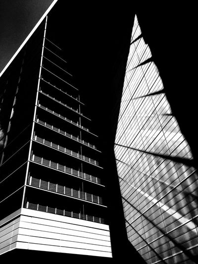 The Architect - 2018 EyeEm Awards Architecture Building Building Exterior Built Structure City Clear Sky Day Low Angle View Modern Nature No People Office Office Building Exterior Outdoors Pattern Shadow Sky Skyscraper Sunlight Window