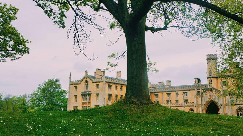 Cambridge Cambridgeshire Riverside Punting Spring Trees Kingscollege