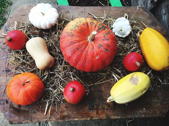 Freshness No People Close-up High Angle View Food Group Of Objects Vegetables Coulourful Autumn Autumn Colors Table Pumpkin