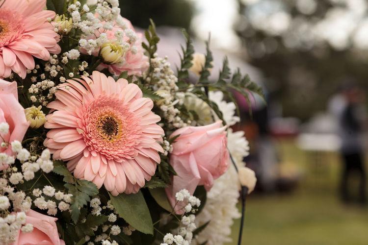 Close-up of bouquet