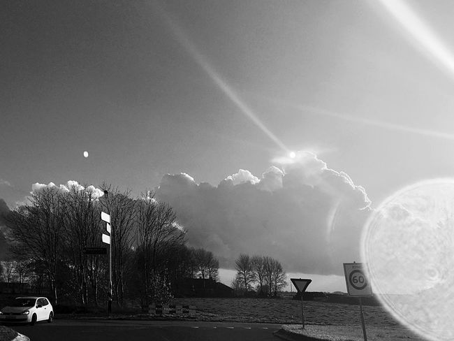 Tree Sky Outdoors Nature Architecture Beauty In Nature Day Cloud - Sky Morning Sky IPhoneography Netherlands Light And Shadow Landscape Silhouette Morning Sun Rural Scene Lens Flare Black And White Black & White