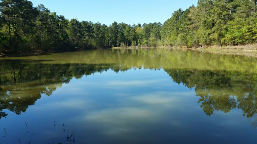 My favorite shot of the day. Reflection Water Lake Nature Blue Tree Sky Outdoors Landscape Reflection Lake No People Day Scenics Nature Trails Sunlight Environment Eye Em Nature Lover Popular Photos Naturelovers Eyemphotos My Photography Naturephotography Beauty In Nature Reflection
