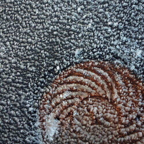 Pattern of frozen asfalt Asfalt Asfalto Backgrounds Close-up Frozen Frozen Nature Frozen Water Ice No People Outdoors Pattern Snow Still Life Stone - Object Textured  асфальт заморозка иней лед снег