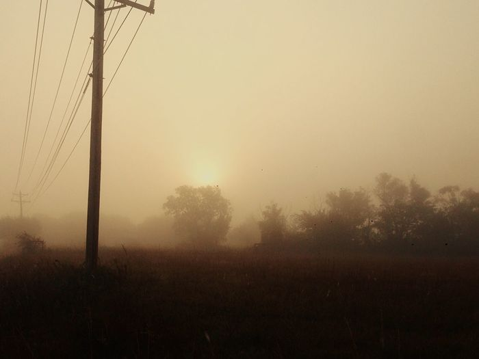 Mystery Mothernature Unknown Oklahoma Weather Oklahoma Countryside Foggyroad Foggymorning Foggy Landscape Foggy Morning Fog Tranquility Vintage Nature's Diversities