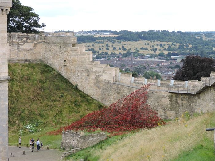 Ancient Architecture Built Structure Castle Famous Place History Lincoln Castle Poppies  Poppies 'wave' Ramparts Rememberance Rememberance Poppy Surrounding Wall The Past Wall We Will Remember Them Our Best Pics